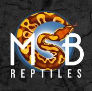 MSB Reptiles