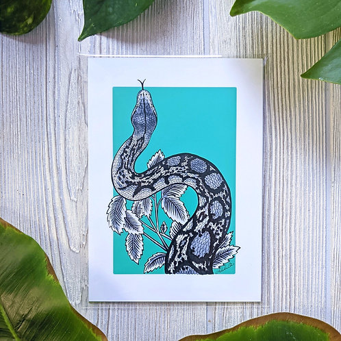 Reticulated Python Teal Small 5x7 Print
