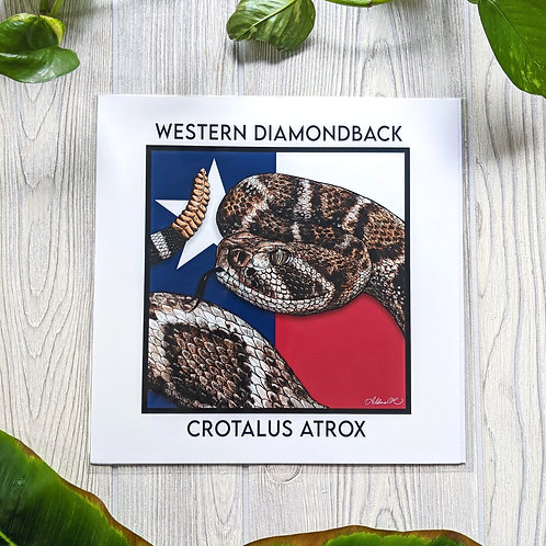 Western Diamondback Large 10x10 Square Print