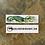 Thumbnail: Emerald Tree Monitor Bookmark