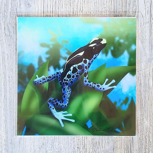 Dendrobates tinctorius Dart Frog