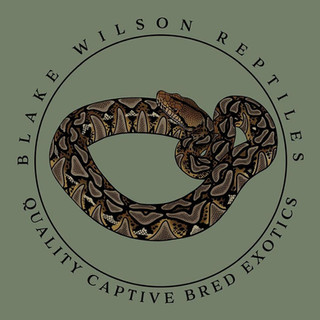 Blake Wilson Reptiles