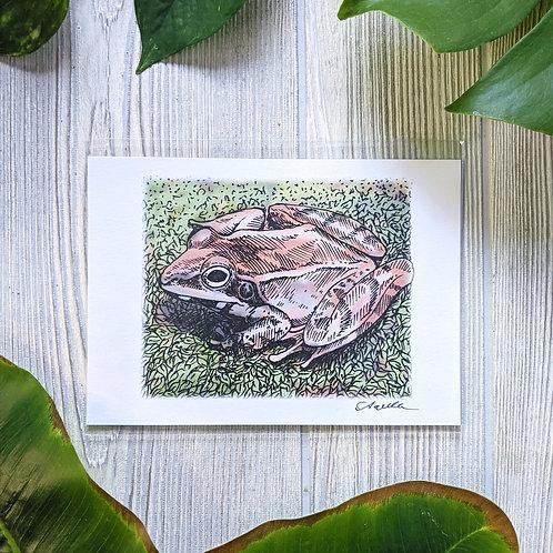 Wood Frog Small 5x7 Print