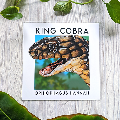King Cobra with name 10x10 Large Square Print