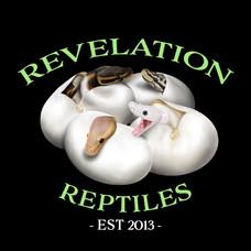 Revelation Reptiles