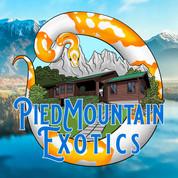 Pied Mountain Exotics