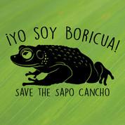 Save-the-Sapo-Cancho.jpg