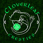 Cloverleaf Cresties