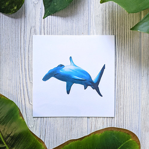 Hammerhead Shark Small 5.5x5.5 Square Print