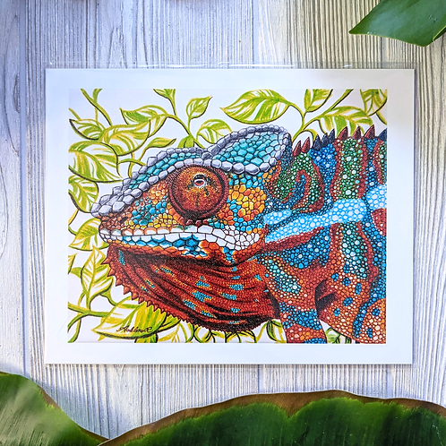 Panther Chameleon Medium 8x10 Print