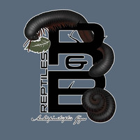 R&B Reptiles millipede