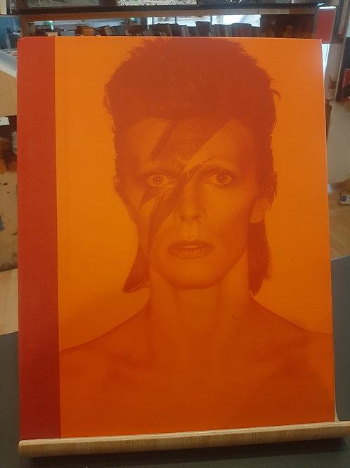 E' il tema, David Bowie, Rizzoli 2013