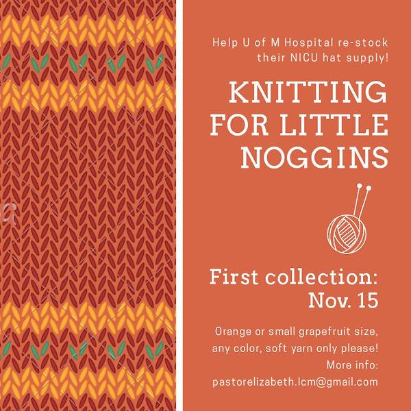 Knitting for Little Noggins.jpg