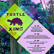Turtle Crosing.jpg