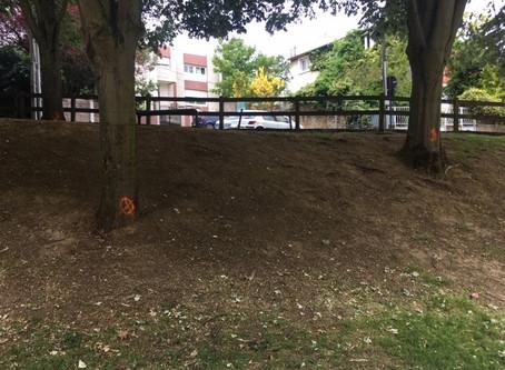 Aux arbres citoyens