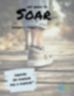 Soar SF 1.png