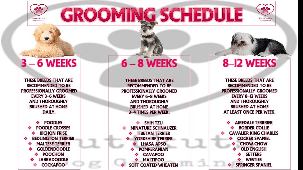 grooming schedule.png