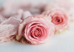 gc rose 3.jfif