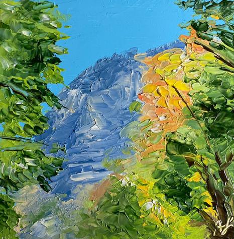 Autumn in Provo Canyon