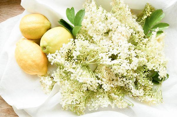 Elderflowers-lemon.jpg
