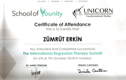 The International Regression Therapy