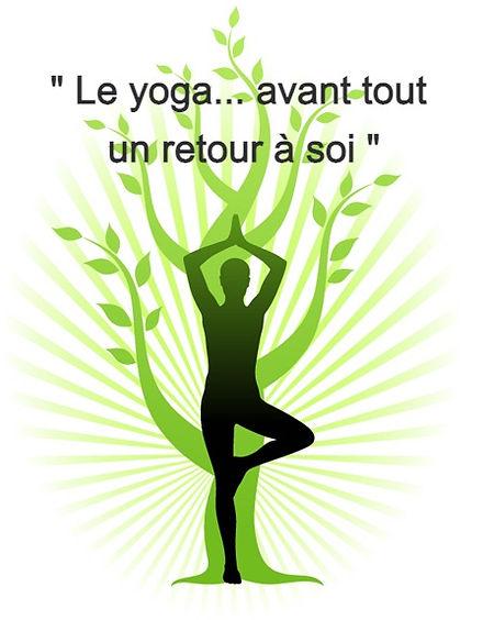 yoga-tree1_edited.jpg