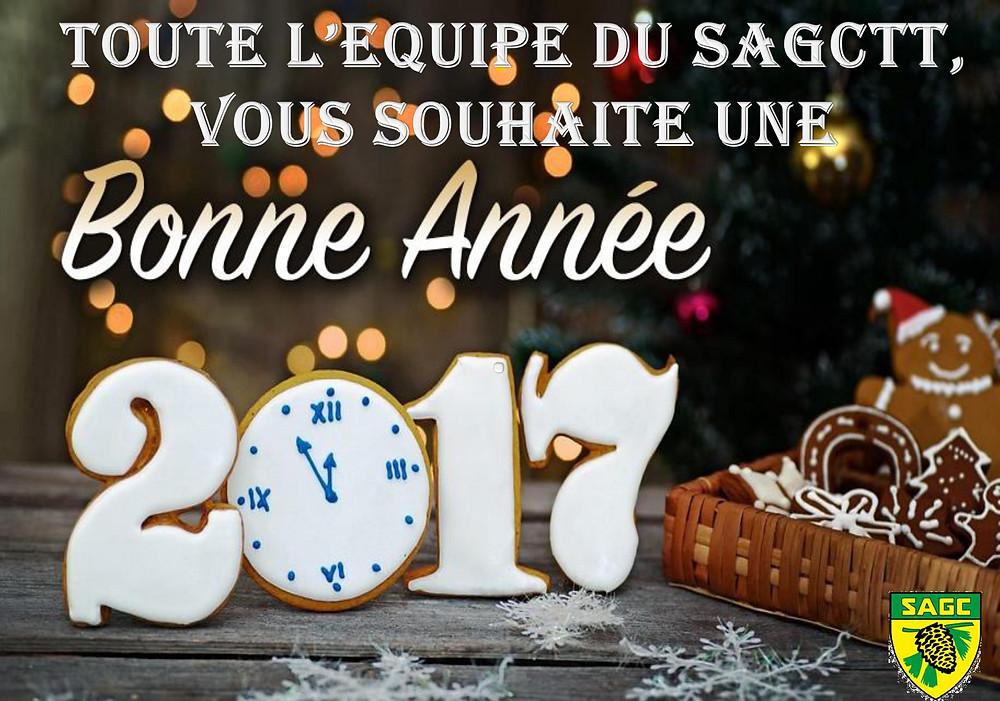 Toute l'équipe se joint à moi pour vous souhaiter une merveilleuse année 2017: que la santé,l'amour, la joie soient au rendez vous dans les 12 prochains mois et que la réussite soit la conclusion de tous vos projets.