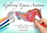 Mindfulness colouring book Exploring Equine Anatomy