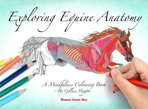 Exploring Equine Anatomy Published