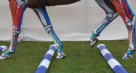 horse sculpture artist lower limb tendon ligaments limb biomechanics