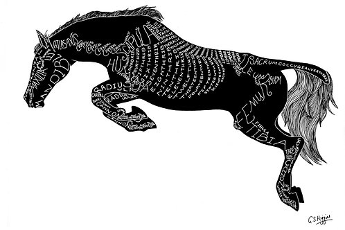 Word Art Print: Silhouette Jump