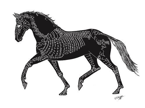 Word Art Print: Silhouette Trot