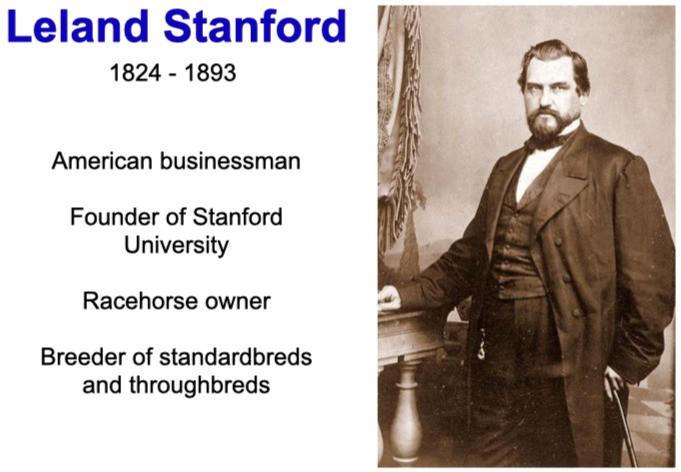 Leland Stanford, thoroughbreds, standardbreds, horses, racing, equine biomechanics