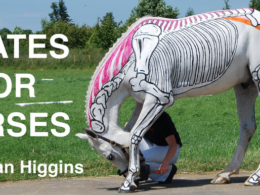 Pilates for Horses - Part 1: Carrot Exercises