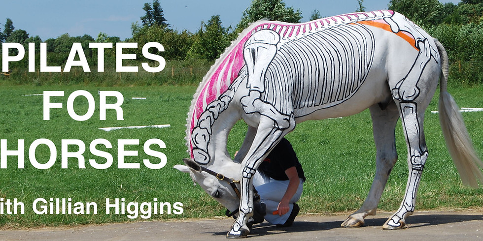 Pilates for Horses with Gillian Higgins