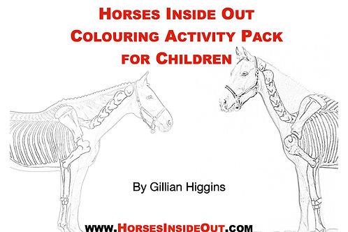 Horse Anatomy Colouring Activity Pack for Children