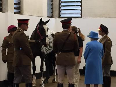 Her Majesty Queen Elizabeth II meeting Quinn and Gillian Higgins at Hyde Park Barracks.
