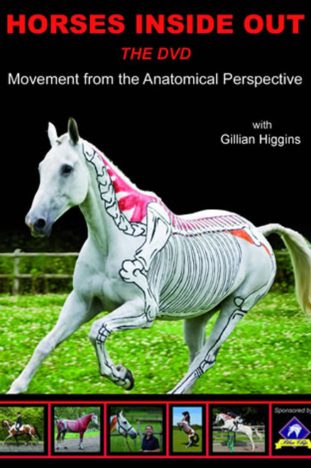 Movement from the Anatomical Perspective