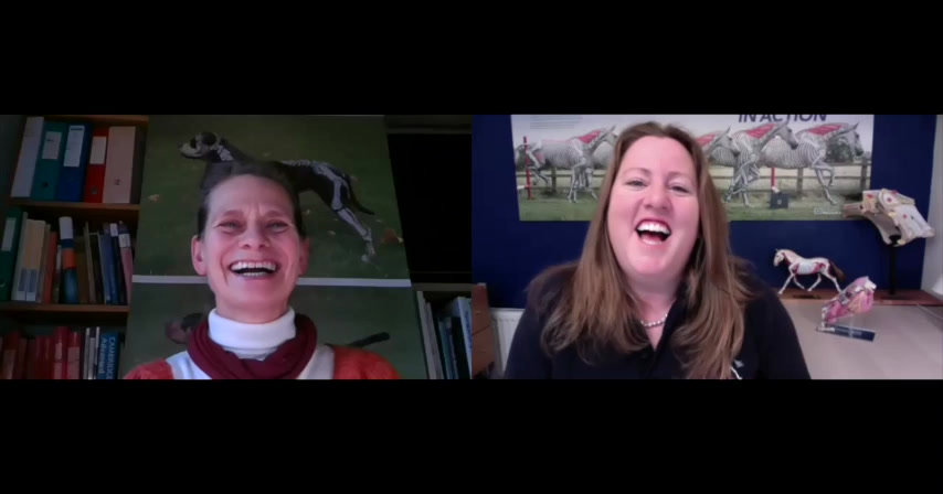Gillian Higgins interviews Dr Vibeke Elbrønd to find more about her, her research and equine kinetic myofascial chains. And why all professional equine therapists need to know about them!