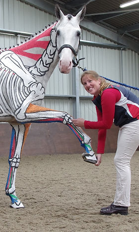 Gillian Higgins Pilates for Horses day course