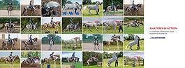 1526 Horses (inside Out) Book Design_2-3