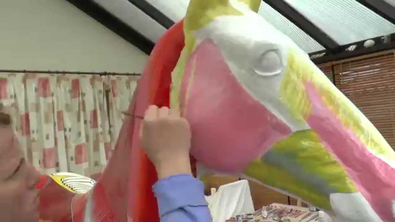 Life size model horse anatomy