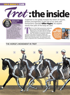 Trot: the inside story