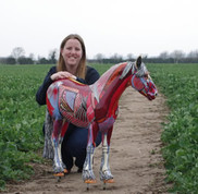 Gillian with the 'unamed horse' painted for World Horse Welfare