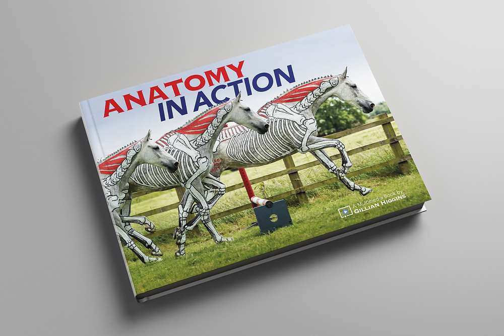 Anatomy in Action, book horse biomechanics, equine locomotion