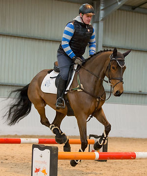 Equine biomechanics course, canter poles, gymnastic jumping, horse anatomy, training, posture with Gillian Higgins