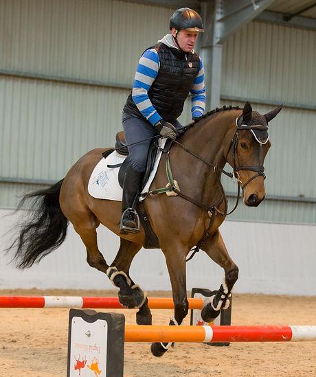 horse and rider biomechanics, anatomy, coaching, training, posture