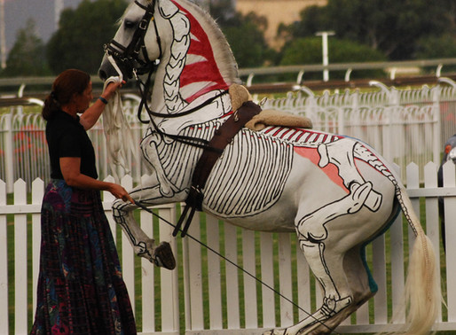 Training Your Horse from the Anatomical Perspective. Part 3: On the Forehand