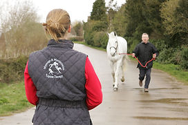 Gillian Higgins assessing equine dynamic posture and movement