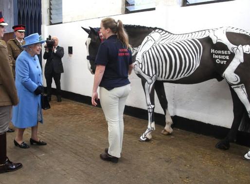 Meeting Her Majesty Queen Elizabeth II